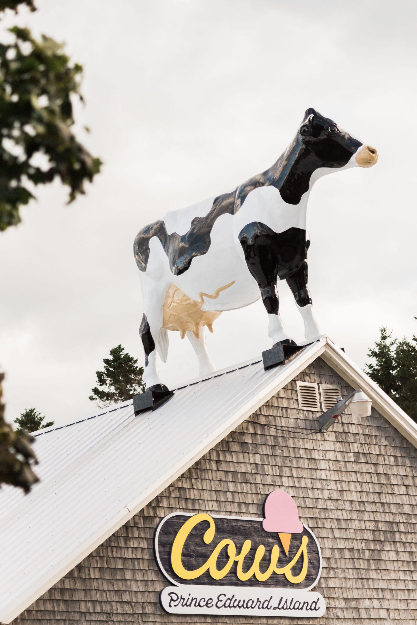 Cows Ice Cream – Cavendish Boardwalk